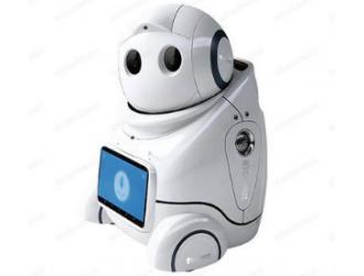 """国网南京公司""""管家式""""智能机器人正式""""上岗"""""""